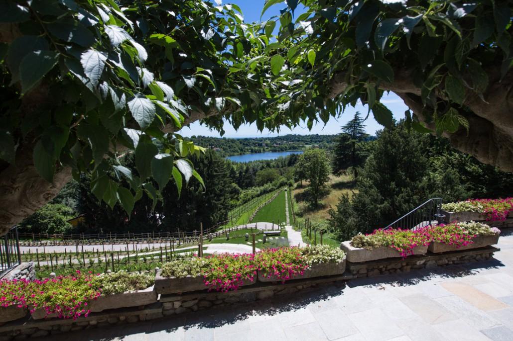 Villa calchi giardino for Aiuole profumate